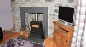 The sitting room with the wood burning stove